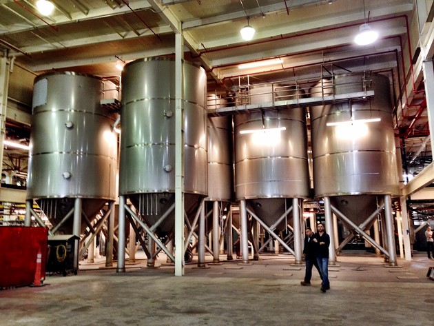500-barrel fermenters. - CHRIS COHEN
