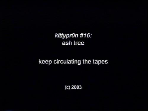sc_60_mst3kkickstarter-kittypr0n.jpg