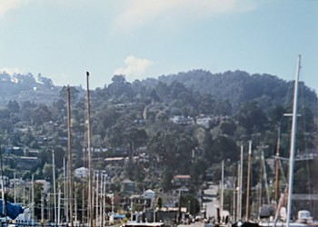 "Held Fast: How Renegade ""Squatters"" Won Sausalito's Houseboat Wars"