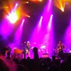 Grace Potter Rocks The Fox
