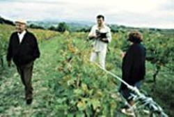 Vine Whine: Jonathan Nossiter (center) - interviews those who make, distribute, - market, sell, and write about wine.
