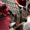 Watch These 49ers and Cardinals Fans Get Into a Bloody Fight (VIDEO)