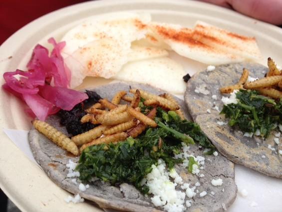 Wax moth larvae tacos by Don Bugito. - TAMARA PALMER