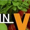 Week in Vegan: Veg-Friendly Pinterest Filters, Super Bowl-Predicting Porcupines