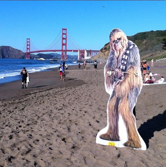 When he's not protecting the galaxy, Chewbacca chills at Baker Beach. - @CHEWBACCASF