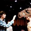 Wild, Horses