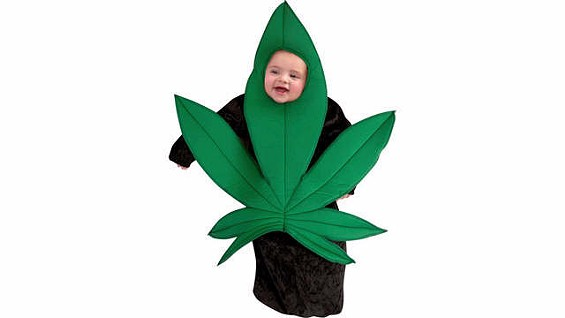 Your kid may need drugs. - BUYDUTCHSEEDS.COM