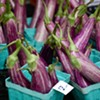 Your Seasonal Produce Guide: Chinese and Japanese Eggplants