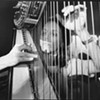 "Harpist Zeena Parkins Is Bringing Her ""Disney Sun Ra"" Band, The Adorables, to Oakland"