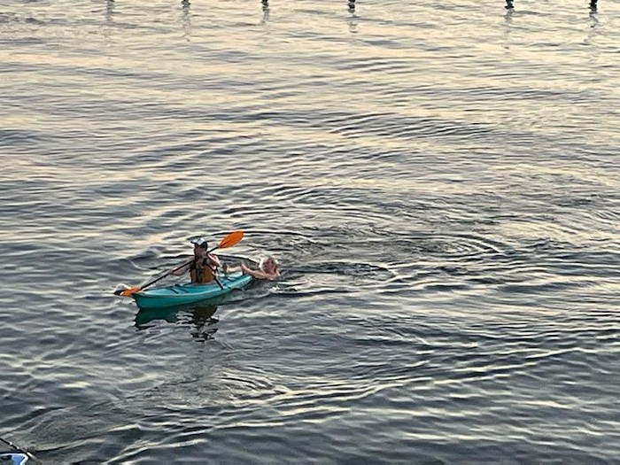 Strausss strong paddling helped a swimmer in distress!