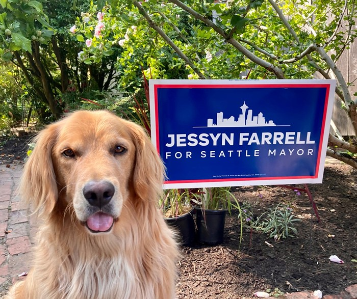 In sending this pic Jessyn Farrell has discovered the one way to sway my vote.