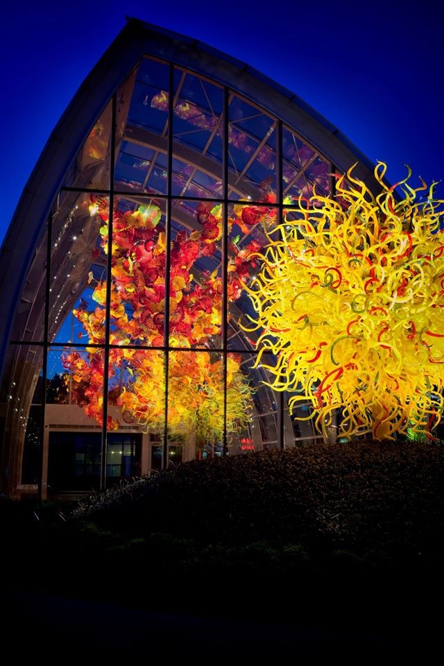 Mindfulness Meditation At Chihuly Garden And Glass In Seattle Wa On Tues Feb 14 At 6 Pm Tues