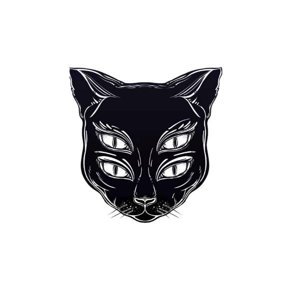 Black Cat Seattle Wa The Stranger