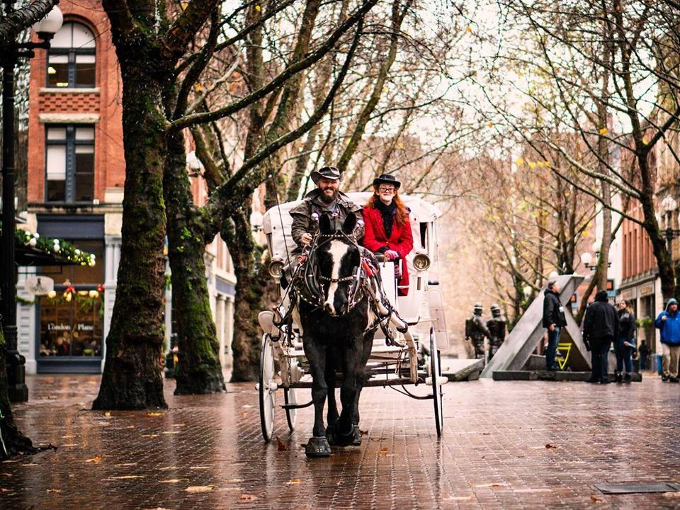 b59ddbdd8ee Horse-drawn Carriage Rides in Occidental Square at Occidental Square ...