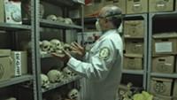 El Cuarto de Los Huesos / The Room Of Bones