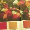 colorbook100.jpg