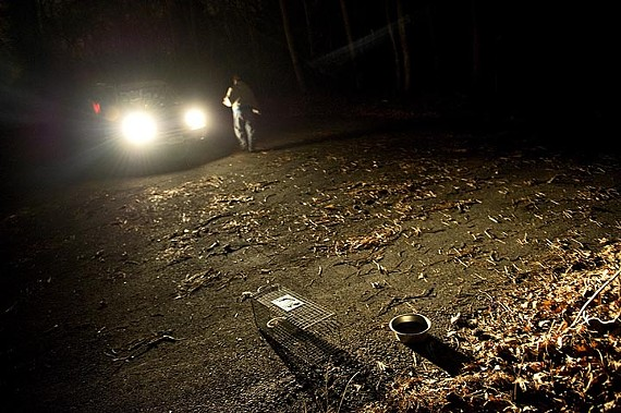 Animal activist Jennifer Erisman waits for a feral cat to take the bait near a colony on South Side. - ASH DANIEL