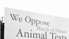 Animal-Rights Group Picks Richmond for Protest