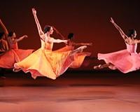 Best Dance for Diplomacy