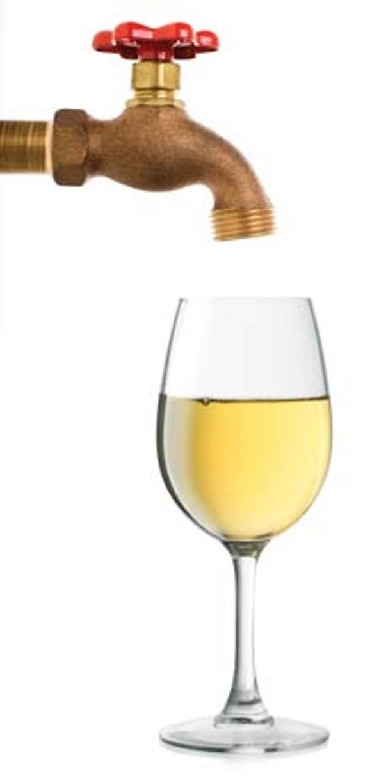 growing_wine_concept.jpg