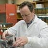 Brain Bong? VCU Studies Weedless High