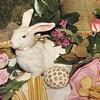 Bunny Games