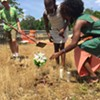 Burying Dixie