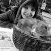 Cat Caper Mobilizes Carytown