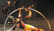 Cirque Eloize at the Modlin Center