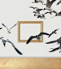 cover33_birds.jpg