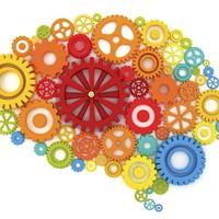 Eight Inspired Ideas