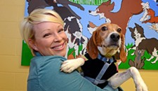 Former Research Beagles Now Up For Adoption