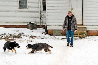 dogs_400x266_1.jpg