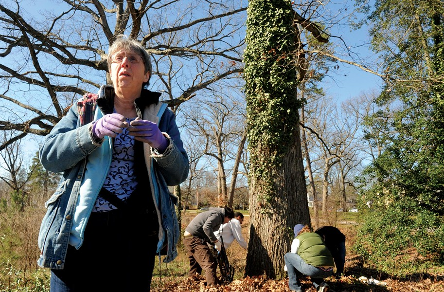 Robin Ruth and a group of volunteers remove ivy in Forest Hill Park on Saturday. - SCOTT ELMQUIST