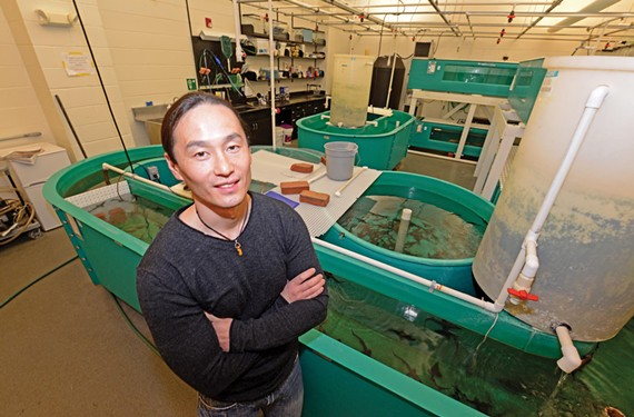 Scientists can learn from the communication arts, says Dan McGarvey, an assistant professor at VCU, in the Center for Environmental Science's aquatics lab. - SCOTT ELMQUIST