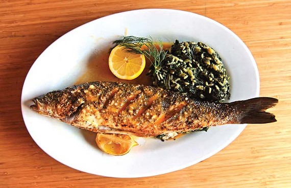 The grilled fish of the day, in this case dorade, comes lightly dressed and served with a daily side, such as spanokorizo, for $25 at Stella's in the Malvern area. - SCOTT ELMQUIST