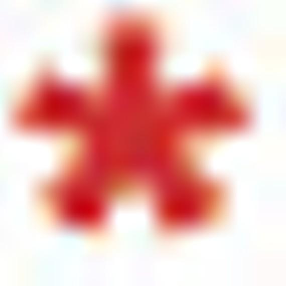 asterisk_0.jpg