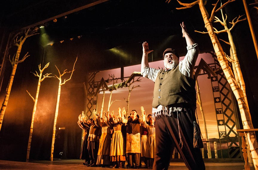 Click To Enlarge Actor David Benoit Brings Star Power To His Performance As  Tevye In U201cFiddler On The. Image Number 4 Of Fiddler Roof ...