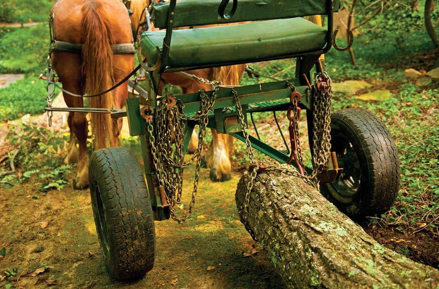 This two-wheeled contraption, called a logging arch, hoists the end of a log off the ground to make it easier for the horses to haul. - SCOTT ELMQUIST