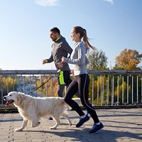 17th Annual Dog Jog and 5-k Run at Richmond SPCA