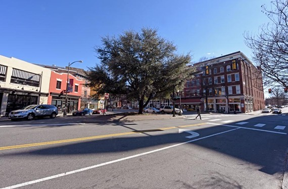 The tree stands at the triangle where Broad Street, Adams Street and Brook Road come together. - SCOTT ELMQUIST