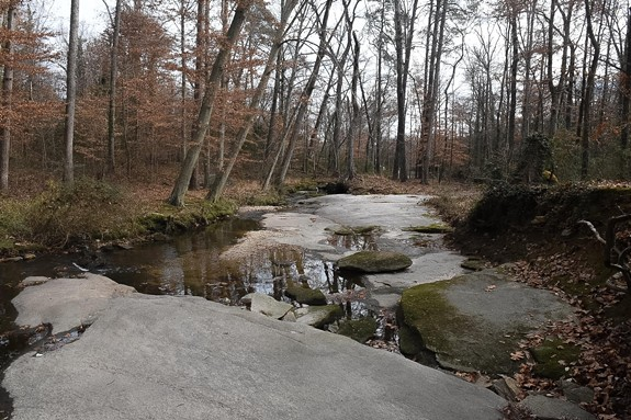 Discussion continues over a controversial proposal to restore Reedy Creek in Richmond's South Side. - SCOTT ELMQUIST