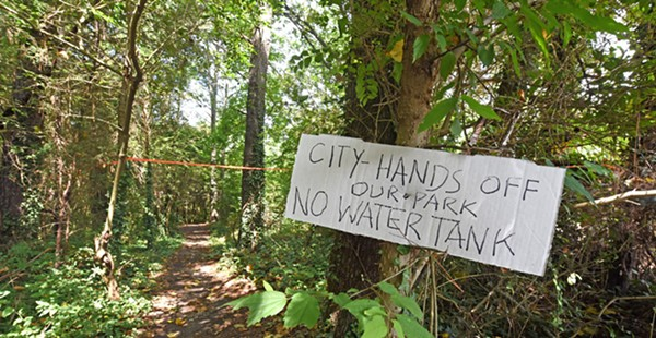 Opinion: Why Richmond Needs to Save Larus Park