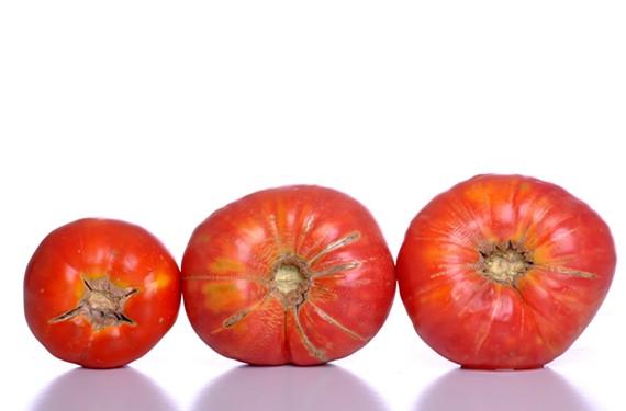 night28_tomato.jpg