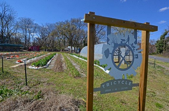 The awards will take place at Tricycle Garden's urban farm in Manchester.