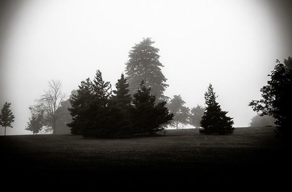 """Chicago Fog: Homage to Sally Mann"""