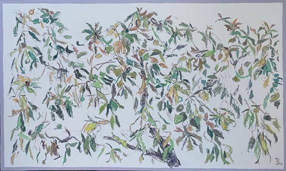"Samuel Bjorklund, ""Avocado Tree (Yellow Harmony)"", 2021, oil on canvas, 36 x 60 inches"