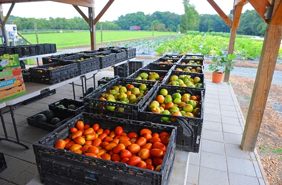 Fresh produce stacks up at Victory Farms on its way to homes and restaurants.