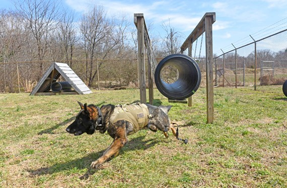 A German shepherd named Phantom takes on the obstacle course at a new K-9 training center in the North Side.