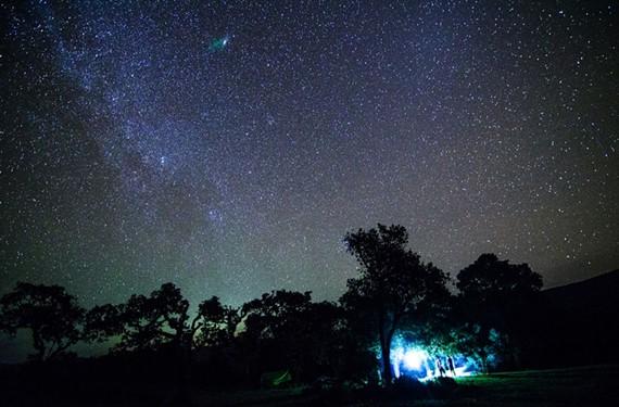 night32_stars.jpg